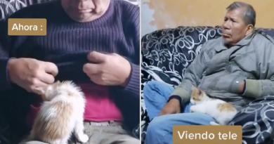 Su padre no quería gatos en su casa y ahora consiente al minino (VIDEO)